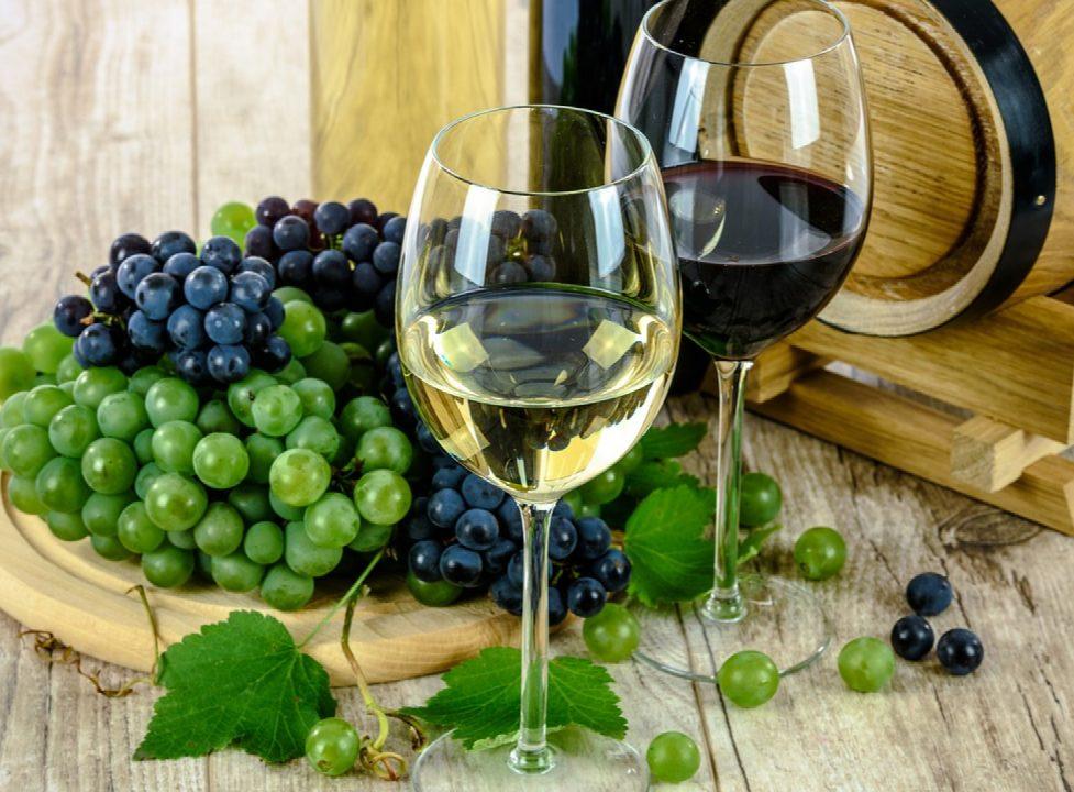 Comment reconnaître un vin de qualité ?